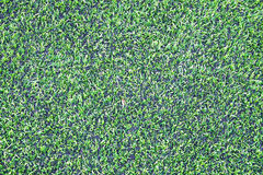 Futebol & x28; soccer& x29; campo Fotos de Stock Royalty Free