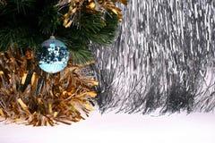 futerko bawi się drzewa Zdjęcia Royalty Free
