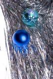 futerko bawi się drzewa Obraz Royalty Free