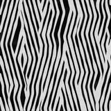 futerkowa zebra Zdjęcie Royalty Free
