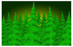 futerkowi drzewa ilustracji