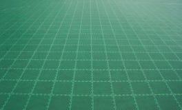 Futsal fält Arkivbild