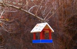 Futtertrog für Vögel in einem Waldabschluß oben Stockbilder