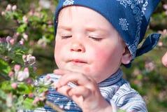 Futur botanyst Images stock
