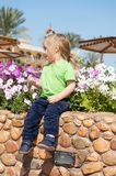 Future, flourishing, blossom. Child pick flowers in flowerbed on sunny day. Germination, growth, childhood. Summer vacation concept. Boy sit on stone curb on Stock Photos