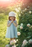 Future and flourishing. Child standing at blossoming rose flowers on green grass. Germination and growth. Innocence, purity and youth concept. Girl in hat with stock photography