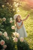 Future and flourishing. Girl in hat pointing finger in summer garden. Innocence, purity and youth concept. Child standing at blossoming rose flowers on green stock photo