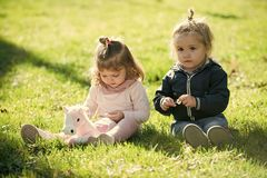 Future, flourishing, youth. Boy and girl pick flowers on green grass. Family, love, trust. Brother and sister play with toy horse on sunny day. Children royalty free stock images