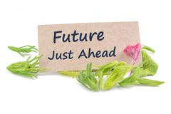 Future just ahead on card. With dried flower isolated on white background Royalty Free Stock Images
