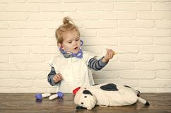 Future profession concept. Health, healthcare, medicine. Boy doctor make injection to toy cow with syringe. Child veterinarian cure toy animal with vaccine royalty free stock photography