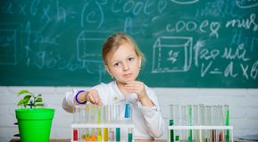 Future scientist. Explore and investigate. School lesson. Girl cute school pupil play with test tubes and colorful. Liquids. School chemical experiment. School stock image
