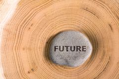 Future in stone on tree. Future in stone on section of the trunk with annual rings Stock Photos