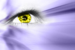 Future Vision. Digital eye in a future vision Royalty Free Stock Photo