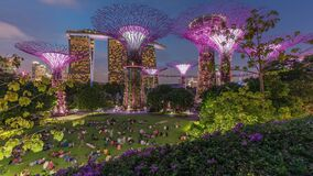 Futuristic aerial view of amazing illumination at Garden by the Bay day to night timelapse in Singapore.