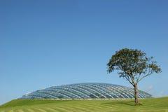 Futuristic Bio Sphere Royalty Free Stock Image