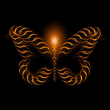 Futuristic butterfly background light lines, abstr Royalty Free Stock Photography