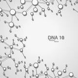 Futuristic dna eps 10. Vector elegant  illustration Stock Image