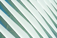 The futuristic facade of a modern building in Valencia. The modern design of the future in the city of arts and Sciences Stock Image
