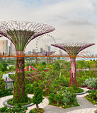 Futuristic garden, Singapore Royalty Free Stock Photo