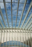 Futuristic Liege-Guillemins railway station Royalty Free Stock Images