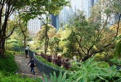 Futuristic park Hong Kong view Stock Image