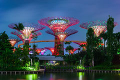 Futuristic view of Garden by the Bay in Singapore Stock Photos