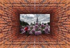 Futuristische Ansicht des alten Tunnels mit hereinkommendem Campus der Backsteinmauer, des trockenen Efeus und des roten sportlic lizenzfreie stockfotografie