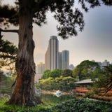 Futuristische Mening van Hong Kong City Scape van Nan Lian Garden stock foto