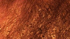 Futuro di superficie su Marte video d archivio