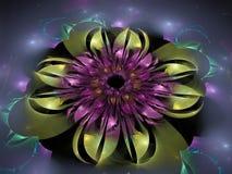 Futuro hermoso de la inspiración de la flor de la textura del fondo digital mágico adornado abstracto del tracery Fotos de archivo