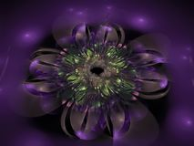 Futuro hermoso digital de la inspiración del tracery armonioso adornado abstracto de la flor Fotografía de archivo