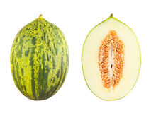 Futuro melon Royalty Free Stock Images