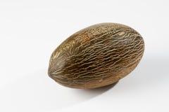 Futuro melon na białym tle Obrazy Royalty Free