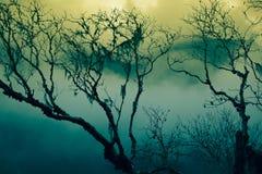 Futurystyczni drzewa Obrazy Stock