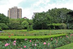 Fuxingspark, Shanghai royalty-vrije stock fotografie