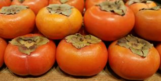 Fuyu Persimmons Royalty-vrije Stock Foto