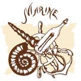 Fuzileiro naval do logotipo Fotos de Stock