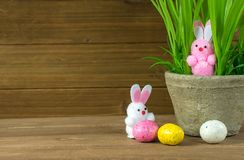 Fuzzy Easter bunnies with plant Royalty Free Stock Photos