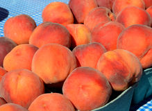 Fuzzy Peaches at farmers market. Display of summer peaches at the local farmers market Royalty Free Stock Image