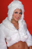 Fuzzy Snow Bunny royalty free stock images