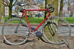 Red fixie bike parked onto a tree. Red fixie bike, the bike is an old race bike from the 80's converted into a fixie, high speed and single Stock Photos