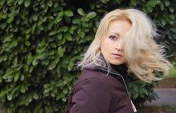 fying волосы Стоковое Изображение RF