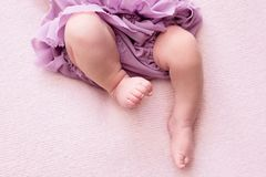 Fylliga ben av en nyf?dd flicka i en lila kjol, ung ballerinadansare, fingrar p? hennes fot, dansflyttningar, rosa bakgrund, royaltyfri bild