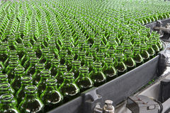 Fyllnads- bransch för dryck, flaskor på transportören Arkivbilder