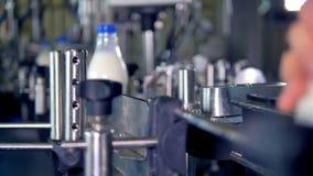 Fyllt och märkt mjölka flaskflyttningen på transporteringslinje stock video