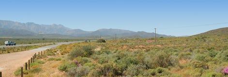 Fynbos und Berge panoramisch Stockbild
