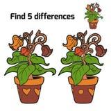 Fynd fem skillnader (blommor) Royaltyfri Fotografi