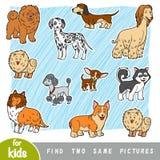 Fynd två de samma bilderna, utbildningslek set för illustration för hundar för bakgrundstecknad filmdesign stock illustrationer