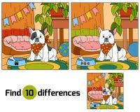 Fyndskillnader, lek för barn (den franska bulldoggen och backgrouen Arkivfoto