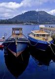 fyne λίμνη Στοκ Εικόνα